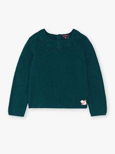 Pull tricot fantaisie vert  VYLETTE / 20H2PFR2PULG611