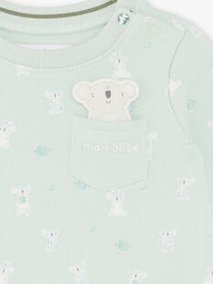 Sweat shirt imprimé vert clair ZAASHER / 21E1BG71SWEG619