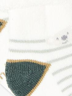 Chaussettes bouclettes beige koala  ZAALI / 21E4BG72SOQ009