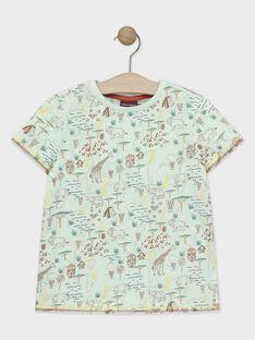 Tee-shirt manches courtes bleu imprimé garçon  TYNOLAGE / 20E3PGM2TMC630