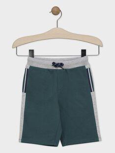 BAS DE JOGGING à capuche coloris vert anglais et gris chiné SACHOUAGE-2 / 19H3PGD2BERG625