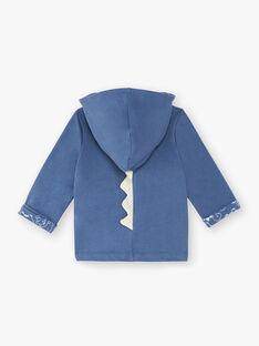 Sweat zippé à capuche bleu ZAEMIL / 21E1BGB1JGHC230