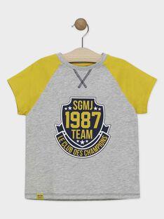 Tee-shirt manches courtes gris chiné et jaune avec imprimé sport garçon SAPOAGE / 19H3PGD1TMC943