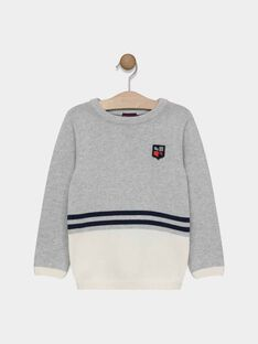 PULL - coloris gris SAMIAGE 1 / 19H3PG91PUL943
