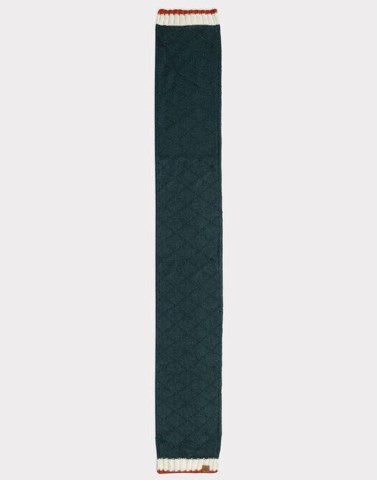 Echarpe verte tricot fantaisie garçon SACHARPAGE / 19H4PGC1ECHG618