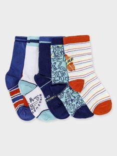 Lot de 5 paires de chaussettes petit garçon  TULOTAGE / 20E4PG91LC5C242