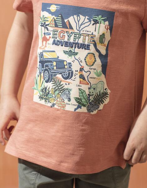 T-shirt manches courtes marron enfant garçon TOCOTAGE / 20E3PGQ2TMCF506