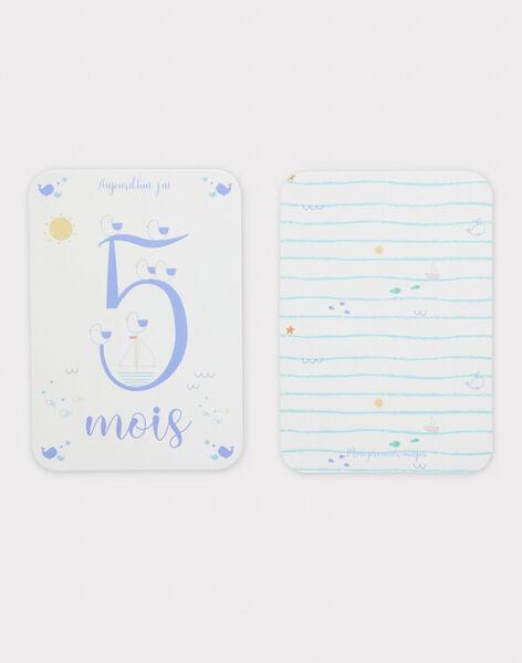 12 Cartes étapes première année bébé garçon TROCARTE2 / 20EZNAF1CNA000