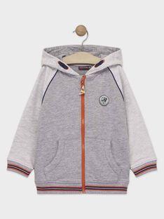 Sweat shirt à capuche gris chiné garçon  TUVETAGE 2 / 20E3PG91JGHJ912