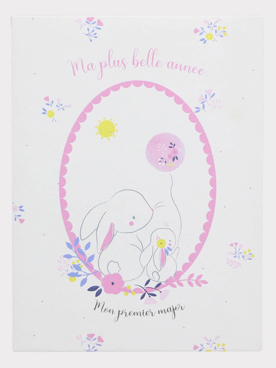 12 Cartes étapes première année bébé fille